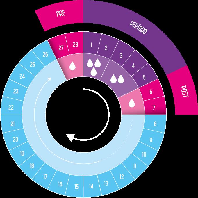 Imagen de ciclo